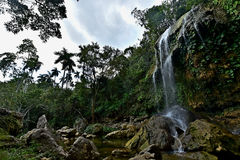 Sierra Rosario Biosphere Reserve, Pinar del Rio. SOROA WATERFALL, Sierra Rosario Biosphere Reserve, Pinar del Rio, Cuba Stock Images