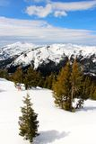 Sierra at Tahoe sick back country looking towards lake Tahoe  California Stock Photography