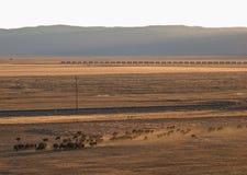Sierra Valley ranch scene Stock Images