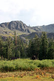Sierra vista di Nevadas Fotografie Stock Libere da Diritti