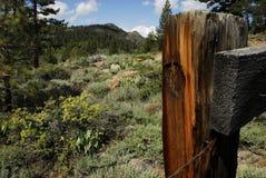 Sierras en California septentrional fotos de archivo libres de regalías