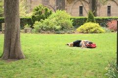 Siesta de la tarde en el parque fotos de archivo libres de regalías