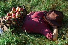Siesta för skörd för ägare för arbetare för ägare för mot efterkrav mogen för äpplen för manträdgård gräsplan för hatt röd arkivfoto
