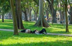Siesta - Hanoi Imagen de archivo libre de regalías