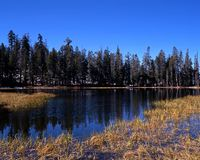 Siesta Lake, Yosemite National Park. Royalty Free Stock Images