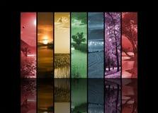 Siete fotos verticales del paisaje Fotos de archivo