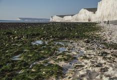 Siete hermanas y acantilados principales con playas, Inglaterra, el Reino Unido - soleado, día caliente imagenes de archivo