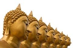 Siete imágenes de Buddha en el fondo blanco Imagen de archivo libre de regalías