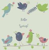 Siete pájaros lindos que cuelgan las flores de la primavera Fotografía de archivo libre de regalías
