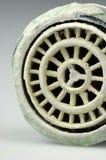 Siev calcificado Imagem de Stock