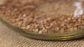 Sifting buckwheat in glass jar Royalty Free Stock Photography