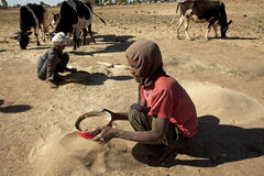 Sifting grain, Ethiopia Royalty Free Stock Photos