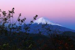 Sig. Fuji Immagine Stock Libera da Diritti