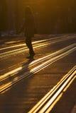 Sig.na attraversa la strada Fotografia Stock Libera da Diritti