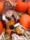 Sig. Scarecrow Fotografie Stock