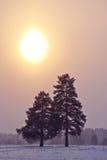 Siga o por do sol. imagens de stock