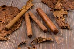 Sigaren en tabaksbladeren stock afbeeldingen