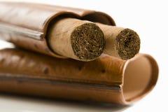 Sigaren in geval, close-up stock afbeelding