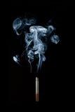 Sigaret dym Fotografia Stock