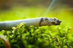 Sigaret in gras Stock Afbeeldingen