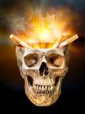 Sigaret in menselijke schedel stock foto's
