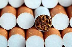 Sigaret met bruine filter Stock Foto