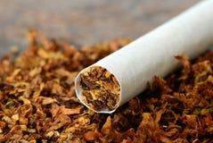 Sigaret/Tabak stock foto