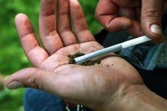 Sigaretta con marijuana fotografia stock