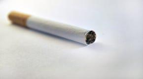 Sigaretta isolata Immagine Stock Libera da Diritti