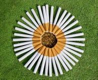 Sigarette del fiore Immagine Stock