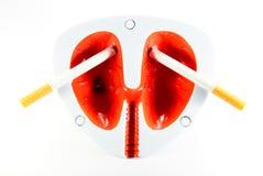 Sigarette e polmoni Immagini Stock
