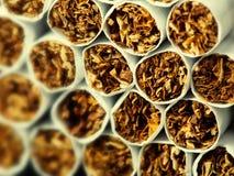 Sigarette nel pacchetto Fotografia Stock Libera da Diritti