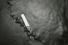 Sigaretuiteinde op blad, abstract concept schadelijk en negatief effect van gewijde sigaret Royalty-vrije Stock Foto