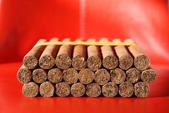 Sigari cubani nel modello 8-9-8 Fotografia Stock Libera da Diritti