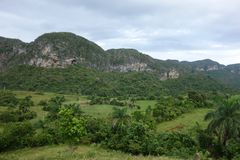 Sigaro caraibico dell'Unesco di Cuba Kuba della valle di Vinales Fotografia Stock Libera da Diritti