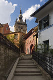 Sighisoara Stockfotos