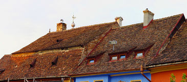 Sighisoara Stock Images