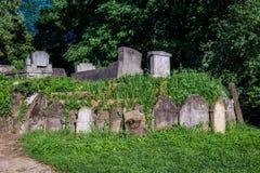 Sighisoara in Rumänien Stockfotografie