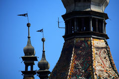 Sighisoara s Tower Fortres Royalty Free Stock Photos