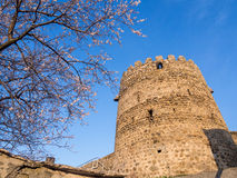 Sighnaghi Stock Image
