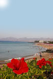 A sight of beauty. A view of a lanzarote beach strip stock image