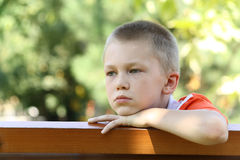 Sight of the boy at a bench Stock Photography