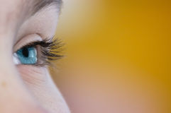 Free Sight In The Future. Royalty Free Stock Images - 5390039