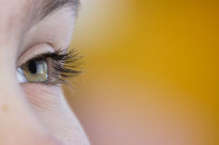 Free Sight In The Future. Stock Images - 5398414