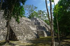Sight of the Mayan pyramid in ruins in the archaeological Balamku enclosure in the reservation of the biosphere of Calakmul, Camp royalty free stock images