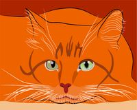 Sight of a red-haired cat hunter. Vector illustration Stock Image