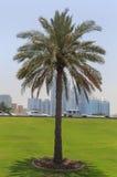 Sight of Sharjah Royalty Free Stock Photos