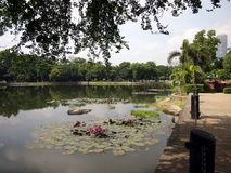 Sights and scenes inside the Ninoy Aquino Parks and Wildlife Center. Royalty Free Stock Photography