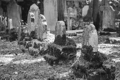 Sightseeing в городе Корфу: b интересного места - старый и старый Стоковые Фотографии RF