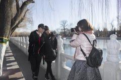 Sightseeing девушки Стоковое Изображение
